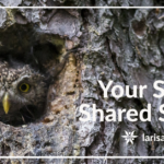 Your Space, Shared Space