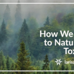 How We Relate To Natural And Toxic Fog