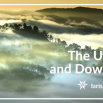 The Upsides and Downsides of Natural Fog and Toxic Smoke